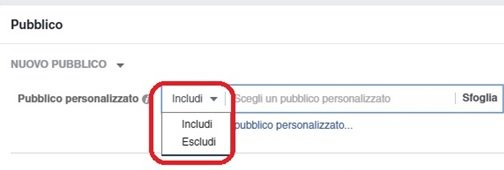 includi-escludi-facebook-ads-lista-clienti