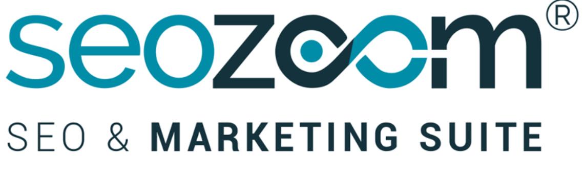 SEOZoom, strumento di analisi di un sito Web
